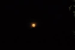 Soirée pleine lune