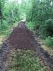 Chemin aménagé